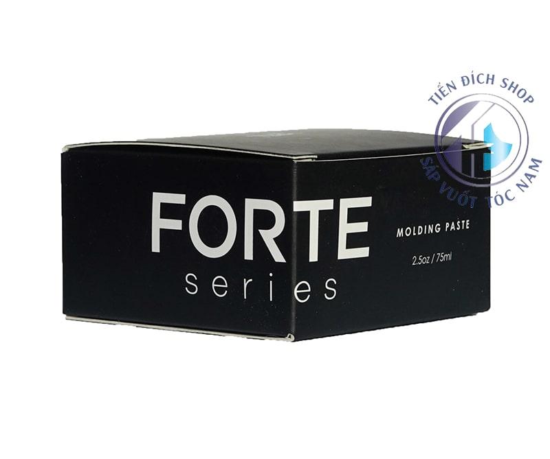 Forte Molding Paste